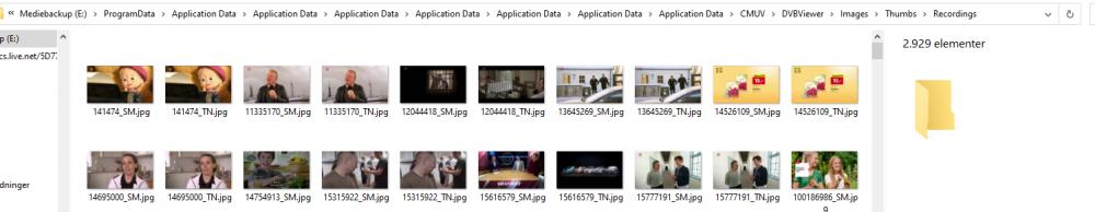 DVBViewer.thumb.PNG.a9a61919c4eeaa4f785b365df6a659cf.PNG